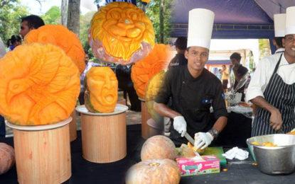 Pumpkin Famers Festival අද (22) ග්රීන්පාත්හිදී…